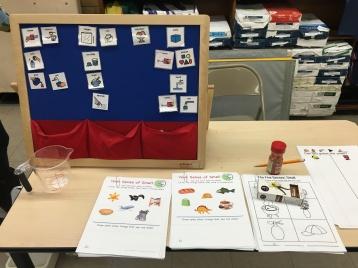 Senses Science Fair